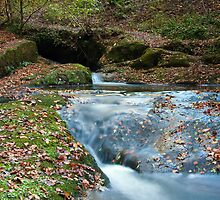 DEAN BROOK CASCADES by Phil  WEBB