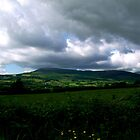 County Tipperary by Coexistism