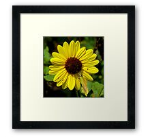Yellow Symphony ~ Part One Framed Print