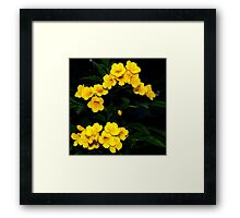 Yellow Symphony ~ Part Two Framed Print