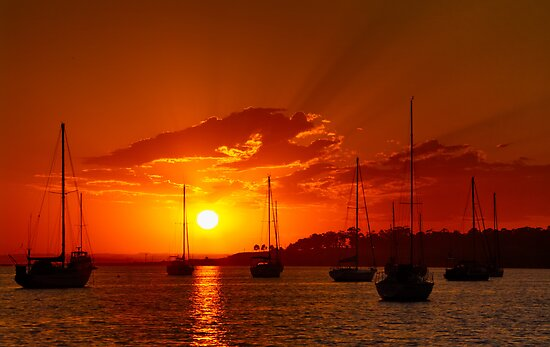 """Corio Dawn"" by Phil Thomson IPA"