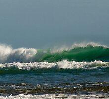 Tasman Sea by Jenny Dean