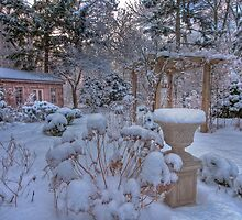 Winter's Garden by Marilyn Cornwell