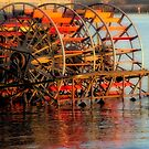 Paddlewheeler by Tracy Riddell