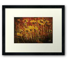 Streams of Light Framed Print