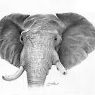 Elephant by Ronny Hart
