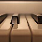 Piano Keys by Nichelle Jones