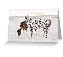 Dalmation Horse Greeting Card