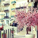 Spring and the city by faithie