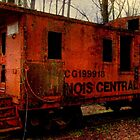 Train Car in the Middle of the Petrified Forest by Debbie Robbins