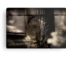 Through The Fence Line Metal Print