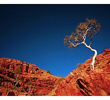 Red Rock, Blue Sky by Tony Peri