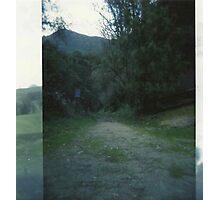 double exposed pathway. Photographic Print