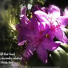 rhododendron with haiku by PoemsProseArt