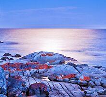 Bay of Fires (vii), Tasmania, Australia by Matthew Stewart