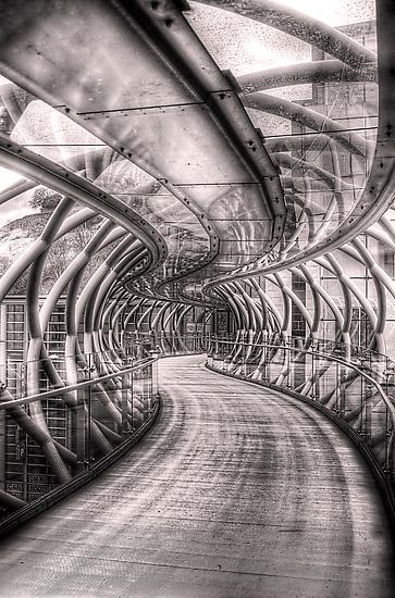 Abstract Bridge by Don Alexander Lumsden (Echo7)