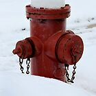 Winter Fire Hydrant by Nicholas Jermy
