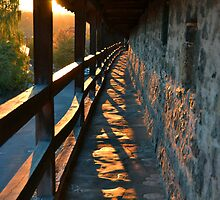 Rothenburg at Sunset by Andy Rhude