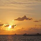 Gold Sky Sunset by Angel LaCanfora