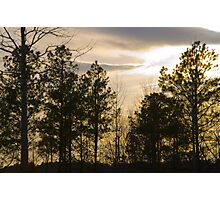 Friday Night Sunset at Cary in March Photographic Print