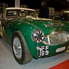 Austin Healey 3000 by Willie Jackson