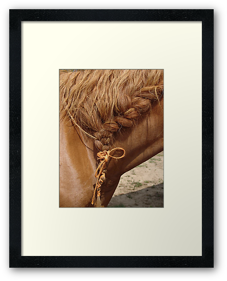 Braid by May Lattanzio