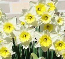 Spring Floral Daffodils Garden Yellow art Baslee Troutman by BasleeArtPrints