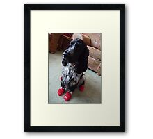 Why Do You Do This To Me? Framed Print