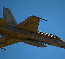 Hornet! by Allen Gray