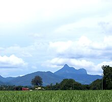 Mt Warning by Jan Stead JEMproductions