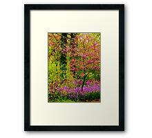 Spring Splash Framed Print
