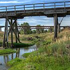 Dilapidated Bridges near Boorowa, NSW, Australia (Y) by Adrian Paul