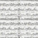 White Chiffon by Linda Miller Gesualdo