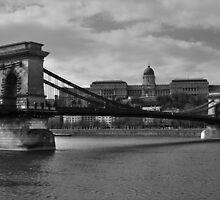 Chain Bridge and The Buda Castle by Béla Török