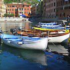 Vernazza  Cinque Terre by Neville Gafen