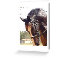 Elodie's Horse Greeting Card