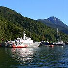 Boats in the Harbor at Puerto Chacabuco by Laurel Talabere