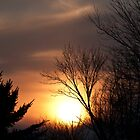 Winter Sunset by jules572