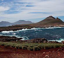 Steeple Jason Falkland islands by Robert van Koesveld