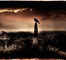 A Raven Upon The Land by Ron C. Moss