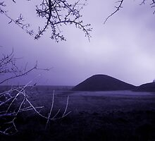 Silbury Hill by Samantha Higgs