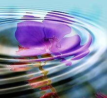 Lavender Love Pool: by Cherubtree