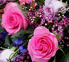 Bright Pink Roses Photo by Lisa Holmgreen