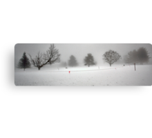 Trees In Snow and Fog - Bridgton Highlands Canvas Print