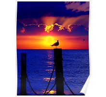 Front Row Seat At Sunset Poster