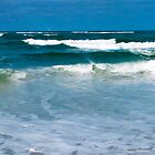 Waves on a Beach by Frank Bibbins