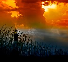 Tybee Island Lighthouse by Phillip M. Burrow