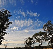 Streaks Over the Gums by Geoff Beck