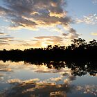 Reflections * Thomson River, Longreach by Deon Mackay
