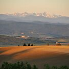 Pyrenees seen from the Languedoc at sunrise by Catherine Ames